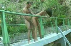 Jungle sex